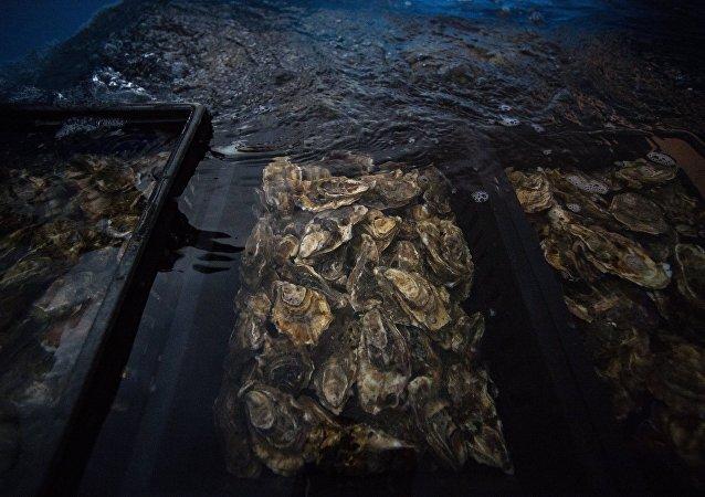 Unas ostras
