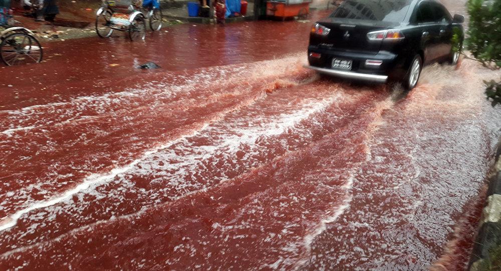 Ríos de sangre inundan las calles de Bangladés
