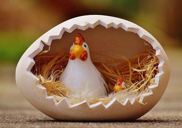 Una gallina dentro de un huevo (ilustración)