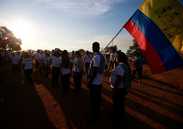 Combatiente de las FARC