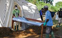 La epidemia de cólera en la República Centroafricana