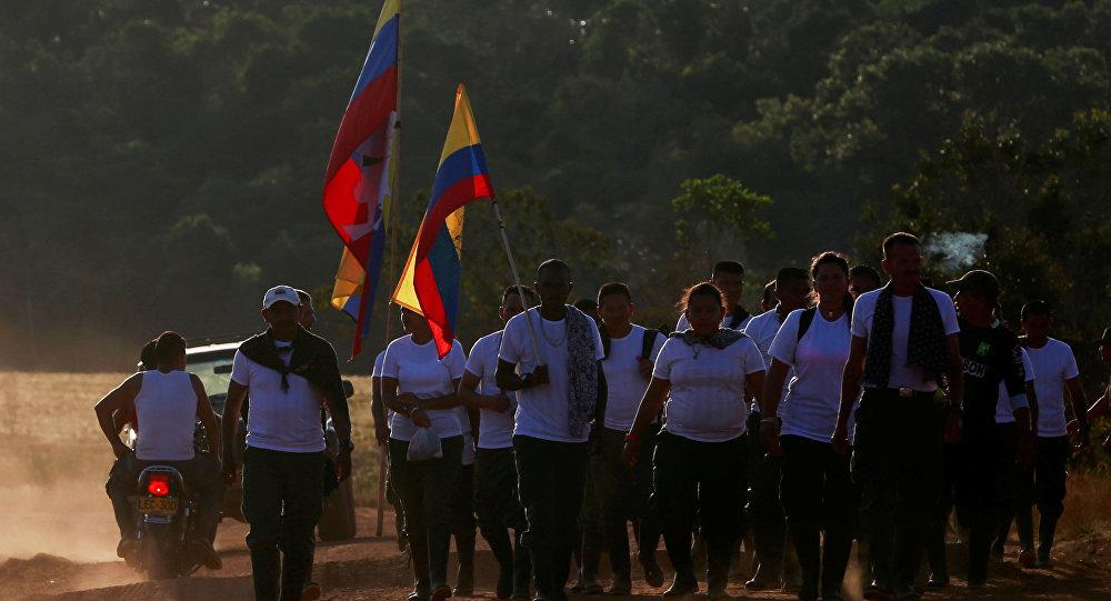 Los combatientes de las FARC (archivo)