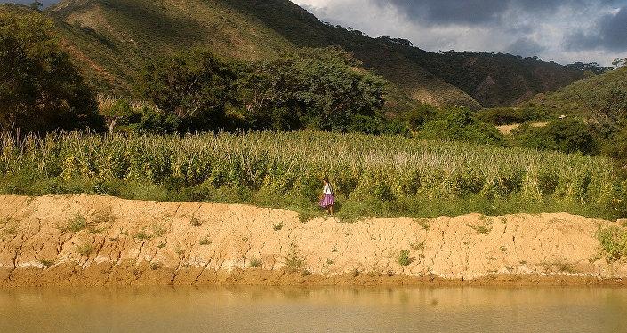 La naturaleza de Bolivia