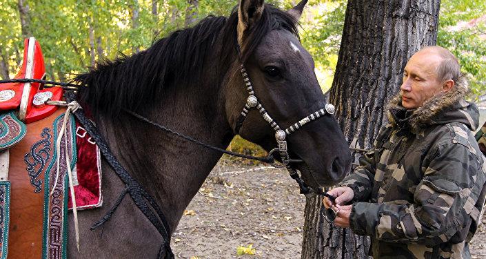 Vladímir Putin y su caballo