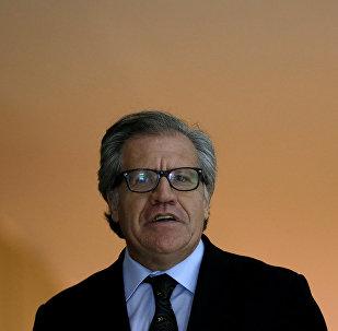 Luis Almagro, secretario general de la OEA (Archivo)