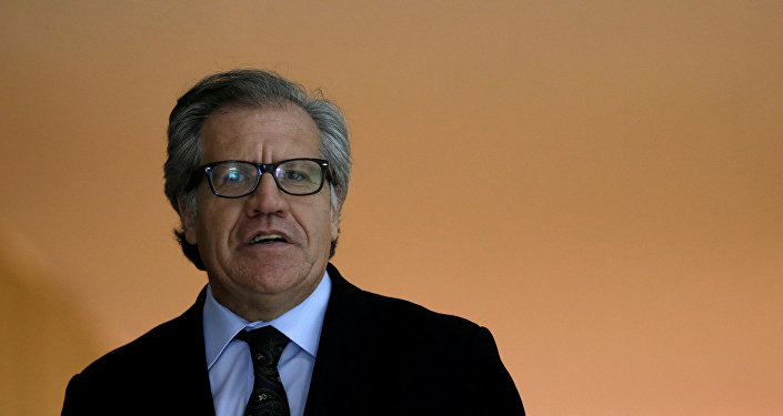 Luis Almagro, secretario general de la OEA
