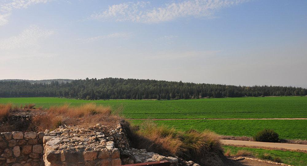 Tel Megido