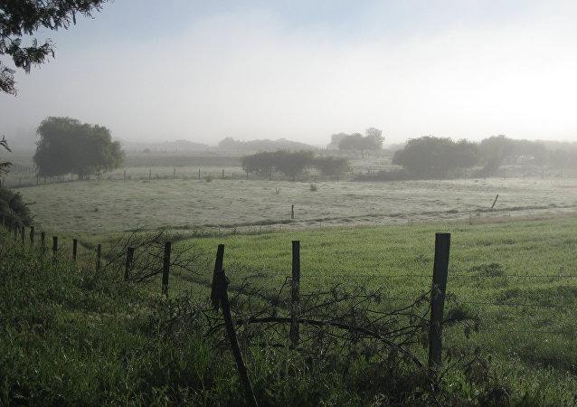 Las tierras de los mapuches