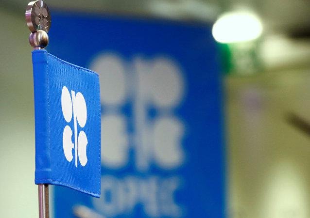 Bandera de la OPEP (archivo)