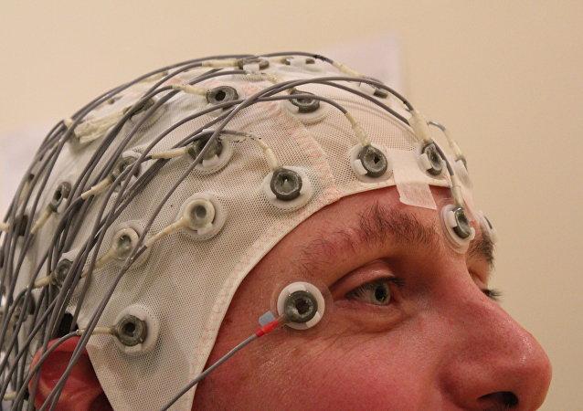 Estudios sobre el cerebro (archivo)