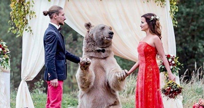 Un oso casa a una pareja