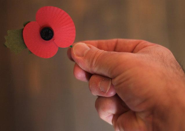 Amapola roja, símbolo de conmemoración de las víctimas de la Primera Guerra Mundial