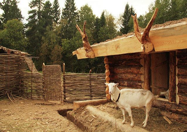 Una cabra en una casa de campo