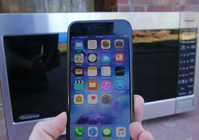 ¿Qué pasa si metes un iPhone en un microondas?