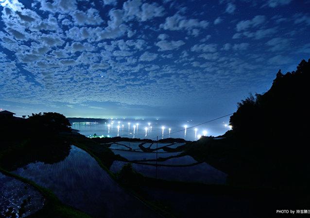 Una plantación de arroz bajo la luz de la luna, Nagato, Japón