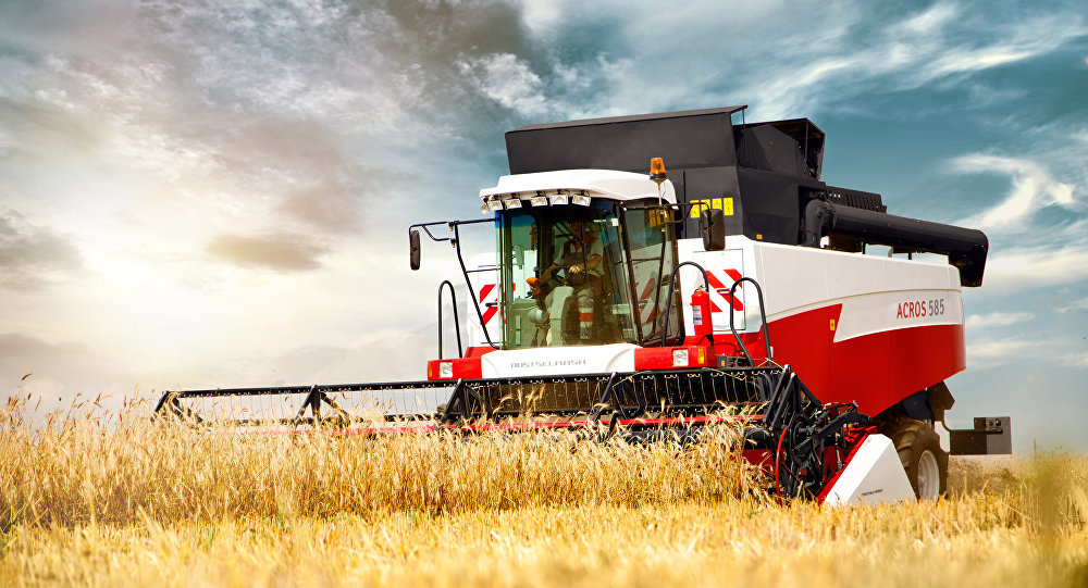 Una cosechadora de la empresa rusa Rostselmash durante el trabajo (imagen referencial)