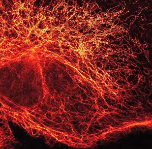 Partículas elementares vistas a través de un súper microscopio de alta resolución