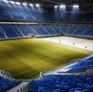 Un estadio de fútbol en San Petersburgo