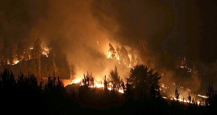 Incendio forestal en Chile (Archivo)