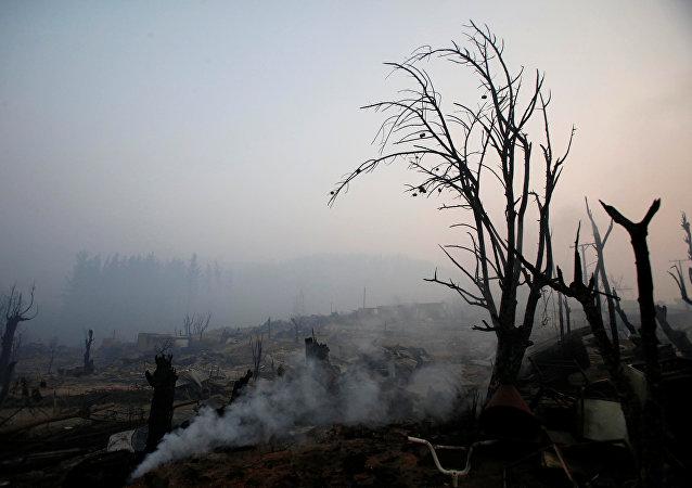 Consecuencias de los incendios forestales en Chile