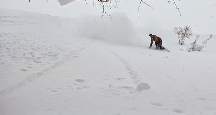 Snowboard (imagen referencial)