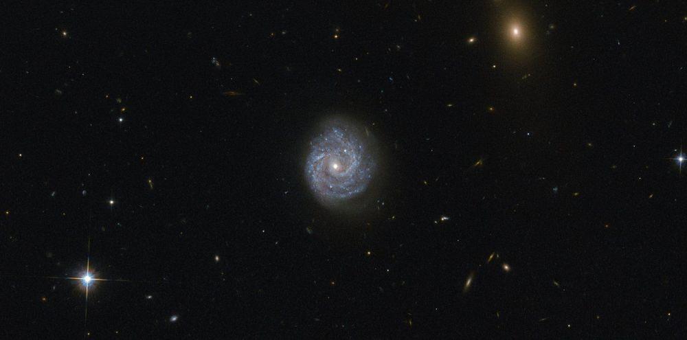 Agujeros negros supermasivos en imágenes
