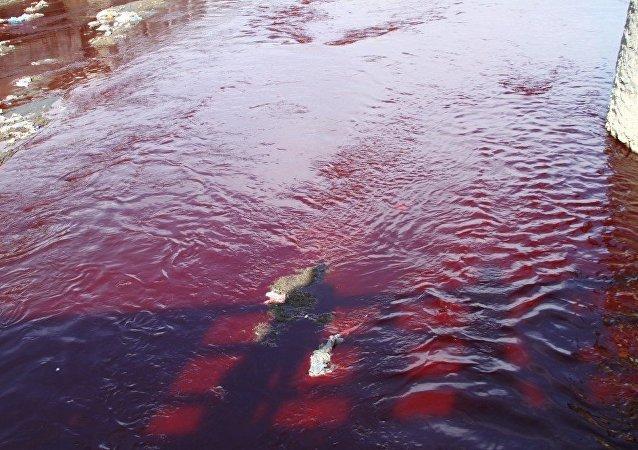 Las aguas del río Kabul en Afganistán teñidas de rojo