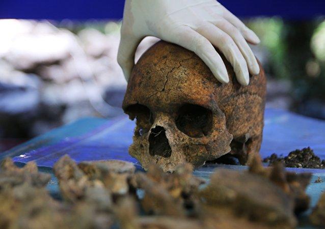 El cráneo de una persona