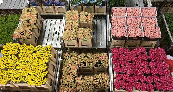 Subasta de flores (imagen referencial)