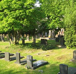 Cementerio (ilustración)