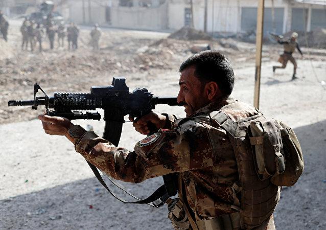 Militante iraquí