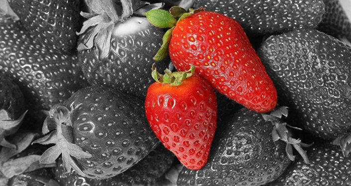 Fresas (imagen referencial)