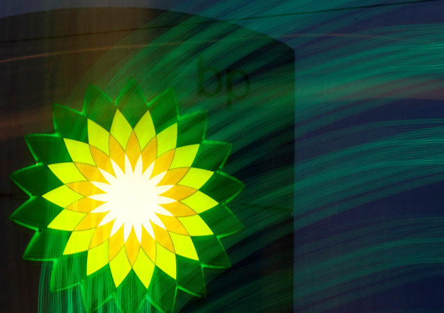 A BP logo is seen at a fuel station of British oil company BP in St. Petersburg, October 18, 2012