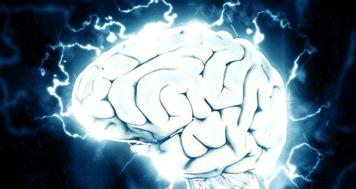Cerveau (image référentielle)