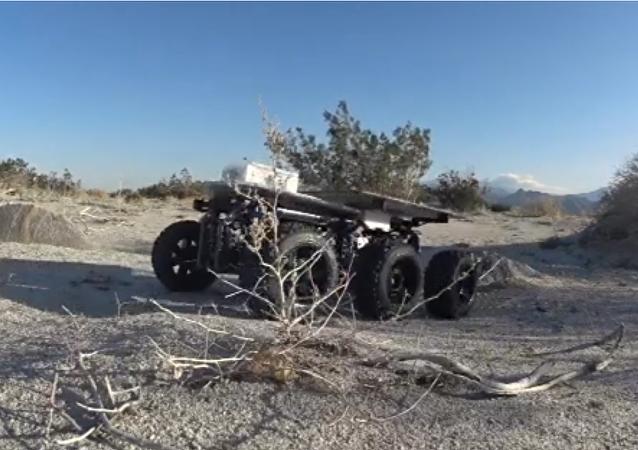 Shybot en el desierto