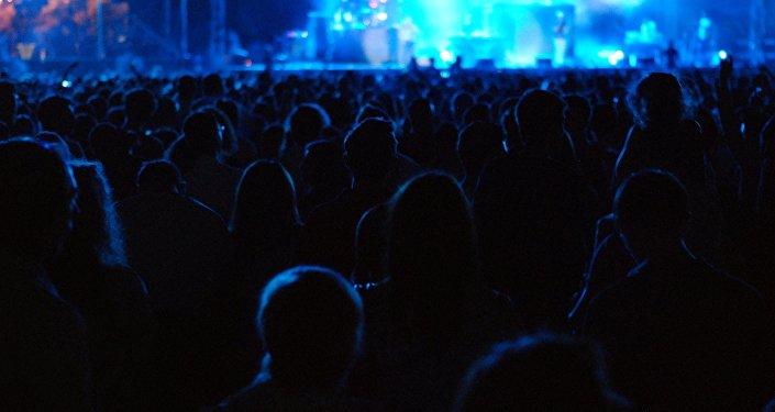 En un concierto ( imagen referencial)
