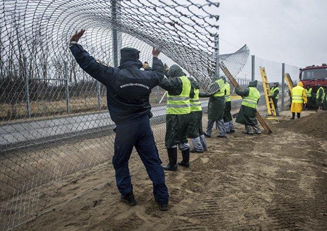 Condenados construyen una cerca de la segunda línea defensiva detrás de la primera valla protectora en la frontera entre Hungría y Serbia