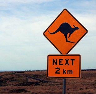 Canguro (señal de tráfico)
