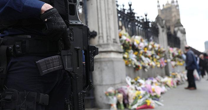 Policía británico cerca del Palacio de Westminster