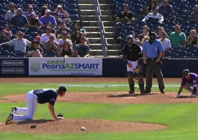 Un enjambre de abejas 'roba' la base a un equipo de béisbol en EEUU