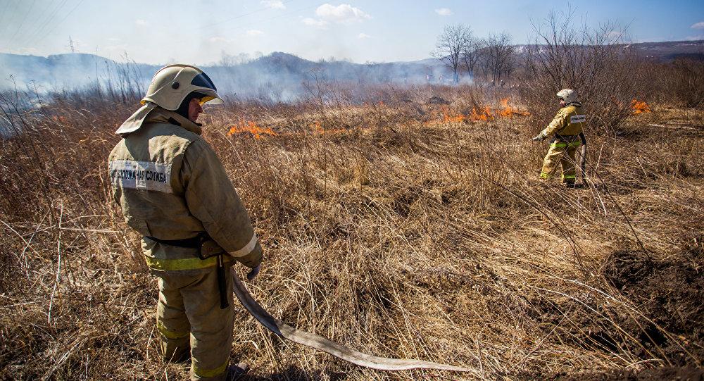 Los equipos de rescate comienzan a extinguir un incendio forestal