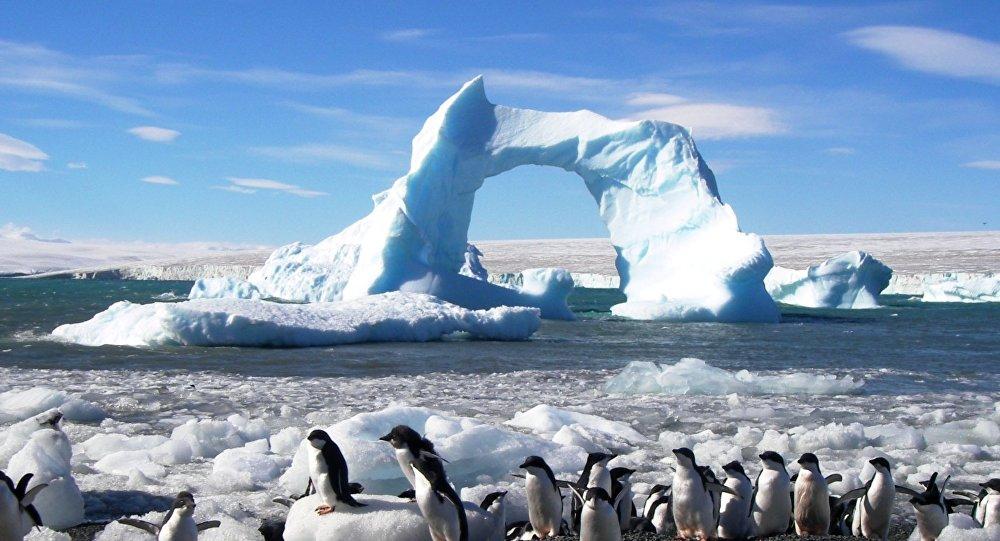 Antártida (archivo)