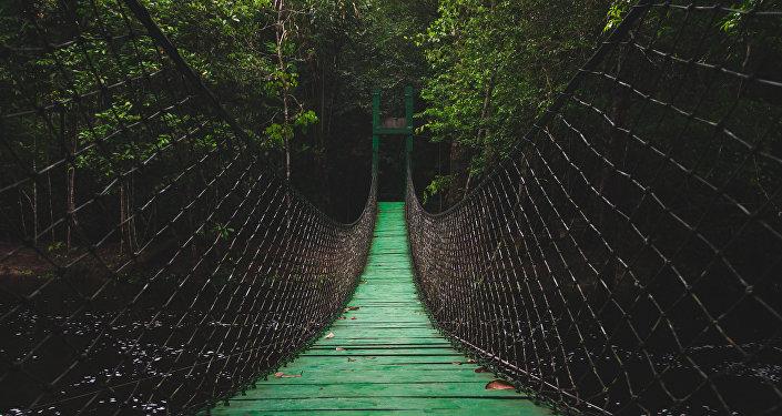 Puente (imagen referencial)