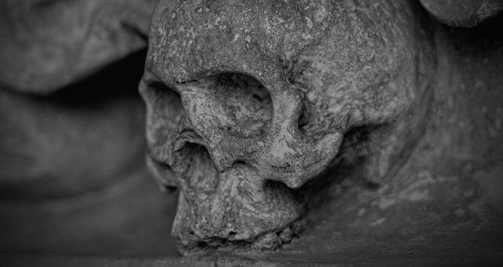 Un cráneo (archivo)