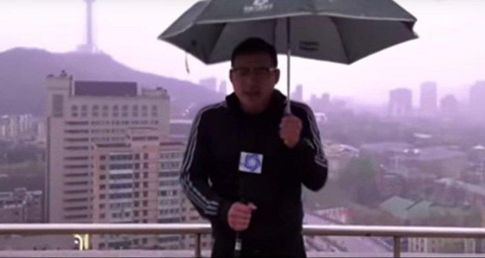 Gajes del oficio: un meteorólogo golpeado por un rayo en pleno reportaje (vídeo)