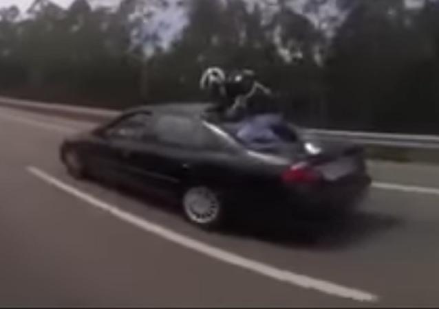¡Aterriza como puedas! Motociclista en Portugal sobrevive de milagro a un accidente