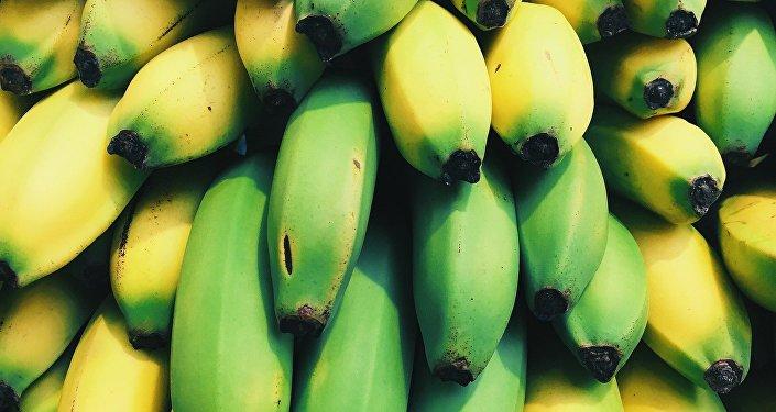 Plátanos (imagen ilustrativa)