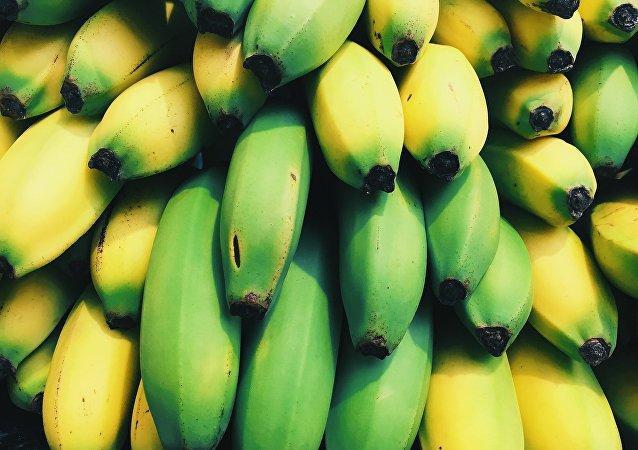 Plátanos (imagen referencial)
