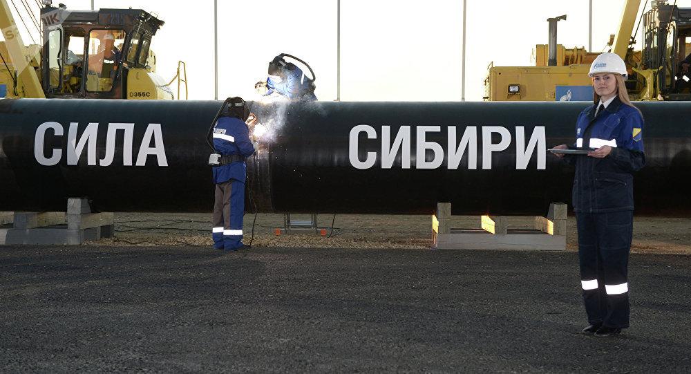 Construcción del gasoducto Fuerza de Siberia (archivo)