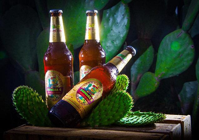 Cerveza de nopal mexicano
